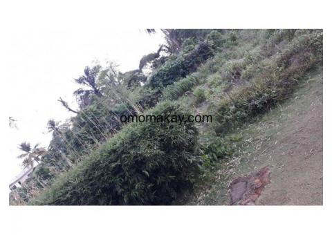Two lot Land for sale